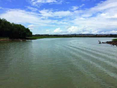 Nil Bleu à la sortie du lac Tana