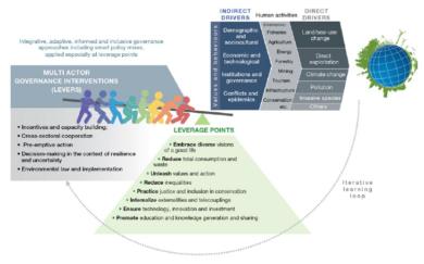 IPBES schéma