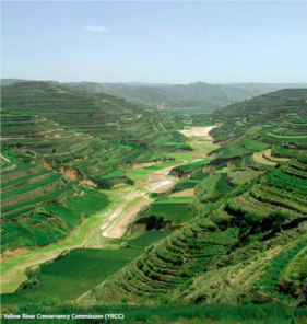agriculture in the yellow river basin