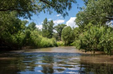 the verde river _ambiance the republic