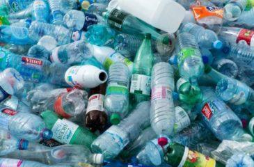 Bouteilles de plastiques