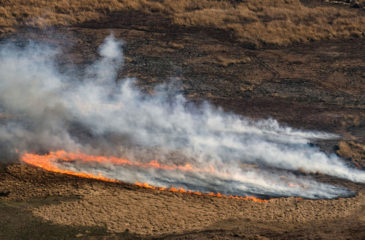 Incendies amérique du sud