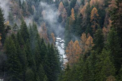Suisse, Canton du Valais, Bellwald, depuis la passerelle entre Furgangen (Bellwald) et Muhlebach (Ernen), fleuve Rhone